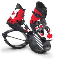 Kanadská vlajka - XR3022F